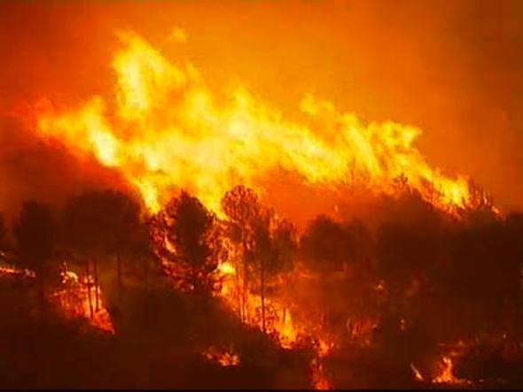 Venganzas vecinales son la causa de la mayor parte de los incendios, seguida de los pirómanos